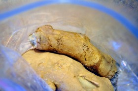 Ginger root frozen in a ziploc bag