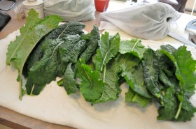 Lay the greens out on a towel or paper towel