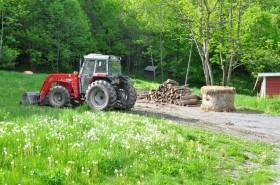 Sunny tractor