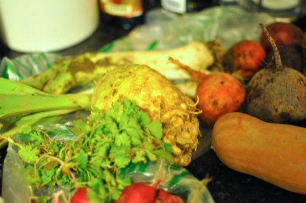 Radishes, celeriac, leeks, squash, and beets