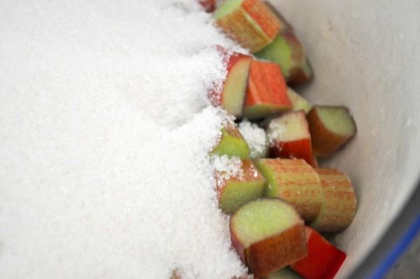 Rhubarb + Sugar = Happiness